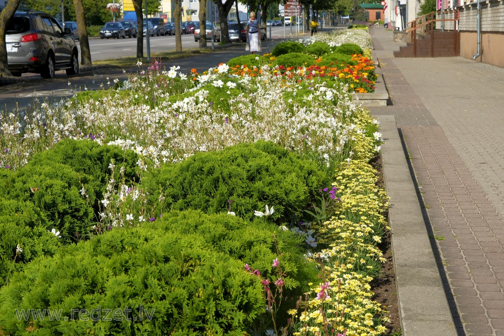 Flower Beds in Ventspils