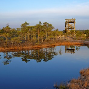 The Viewing Tower Of The Great Ķemeri Bog