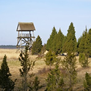 Lake Kaņieris Bird Watching Tower