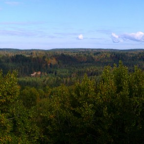 View from the Ligatne Nature Trail Observation Tower