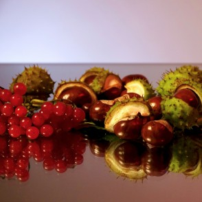 Still Life with Conkers and Guelder Rose Fruits
