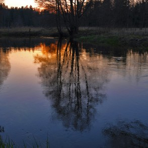 Engure River at Sunset in Spring