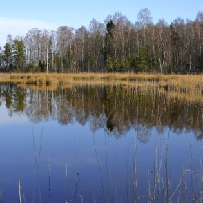 Spring Landscape Of Lake Kaņieris