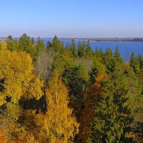 View from the Aluksne Watchtower, Latvia