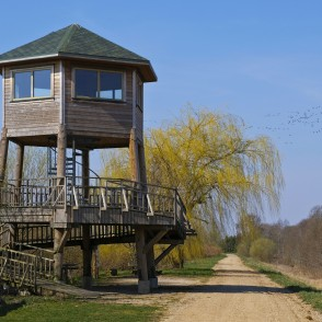 Tērvete Reservoir Bird Watching Tower