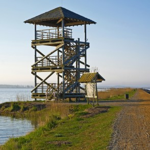 Horse Island Bird Watching Tower