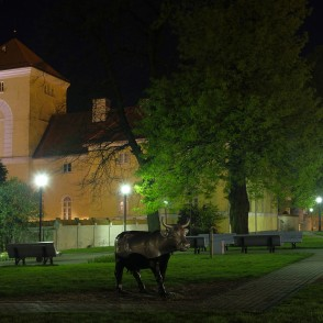 The Castle of the Livonian Order in Night